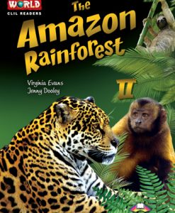 Amozon Rainforest